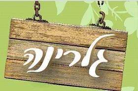 969_logo